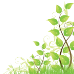 right-leaves1-150x150.png